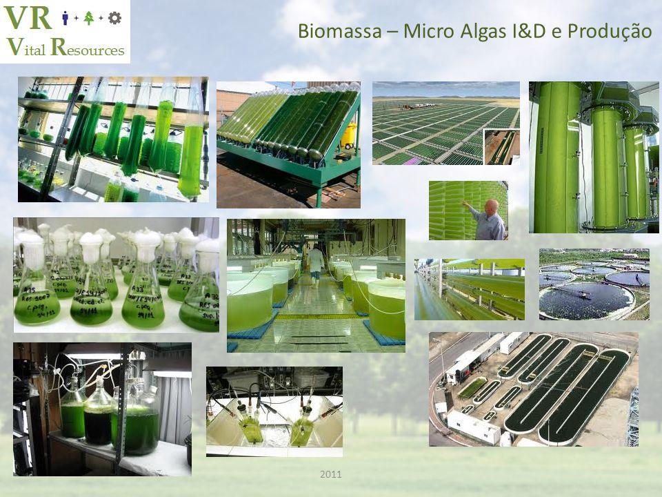 2011 Biomassa – Micro Algas I&D e Produção