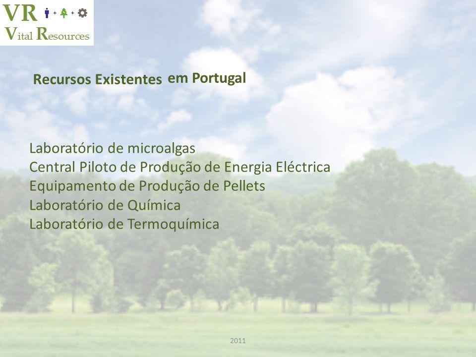 Recursos Existentes Laboratório de microalgas Central Piloto de Produção de Energia Eléctrica Equipamento de Produção de Pellets Laboratório de Química Laboratório de Termoquímica em Portugal