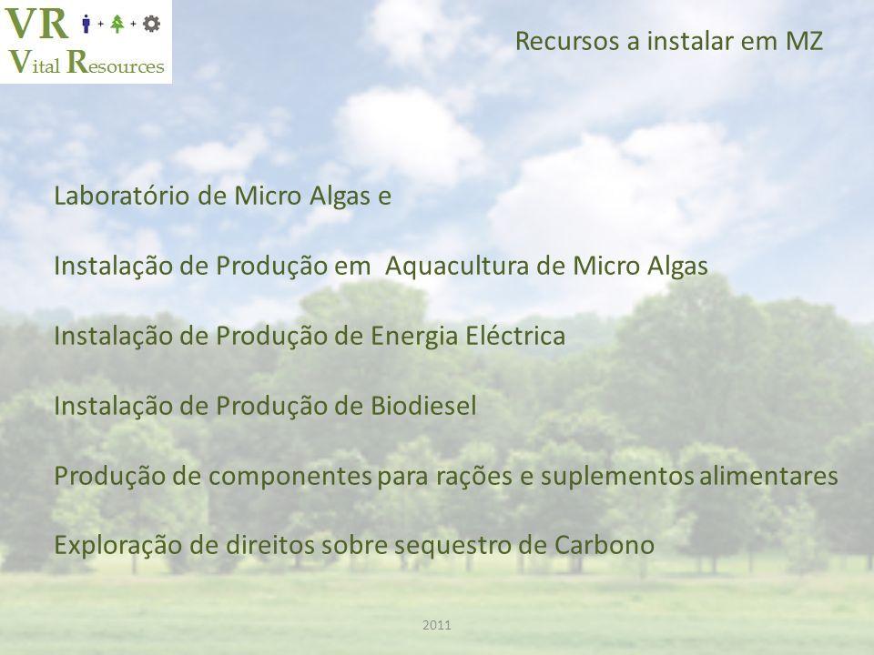 2011 Recursos a instalar em MZ Laboratório de Micro Algas e Instalação de Produção em Aquacultura de Micro Algas Instalação de Produção de Energia Eléctrica Instalação de Produção de Biodiesel Produção de componentes para rações e suplementos alimentares Exploração de direitos sobre sequestro de Carbono