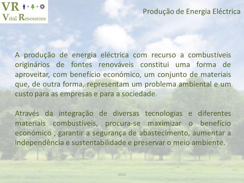2011 Produção de Energia Eléctrica A produção de energia eléctrica com recurso a combustíveis originários de fontes renováveis constitui uma forma de aproveitar, com benefício económico, um conjunto de materiais que, de outra forma, representam um problema ambiental e um custo para as empresas e para a sociedade.