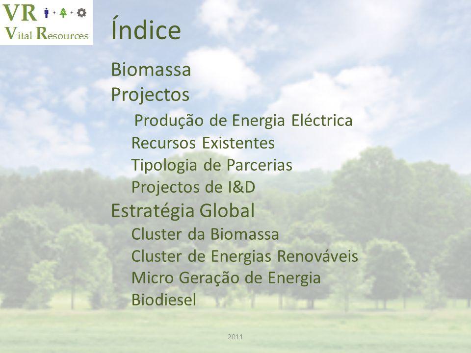 Índice Biomassa Projectos Produção de Energia Eléctrica Recursos Existentes Tipologia de Parcerias Projectos de I&D Estratégia Global Cluster da Biomassa Cluster de Energias Renováveis Micro Geração de Energia Biodiesel 2011