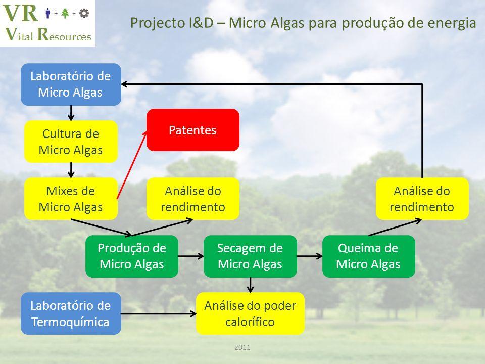 2011 Projecto I&D – Micro Algas para produção de energia Produção de Micro Algas Laboratório de Micro Algas Cultura de Micro Algas Mixes de Micro Algas Análise do rendimento Secagem de Micro Algas Queima de Micro Algas Análise do rendimento Laboratório de Termoquímica Análise do poder calorífico Patentes
