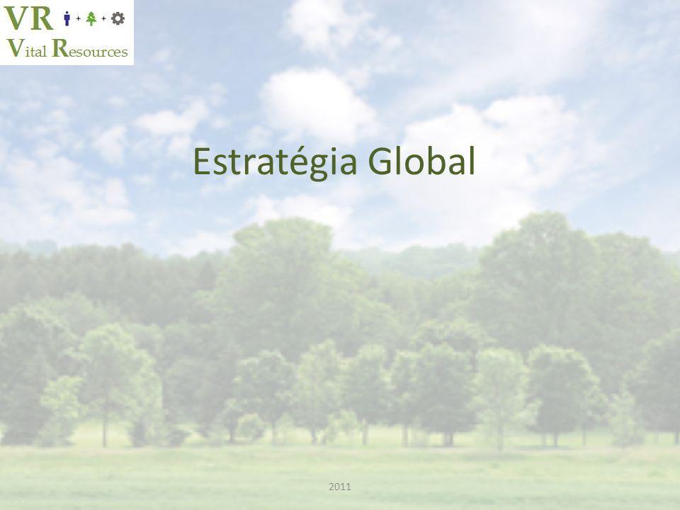 Estratégia Global 2011