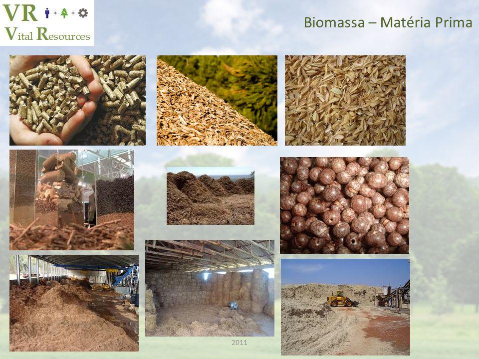 2011 Biomassa – Equipamentos e Centrais