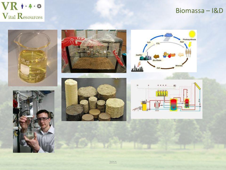 2011 Biomassa – Micro Algas