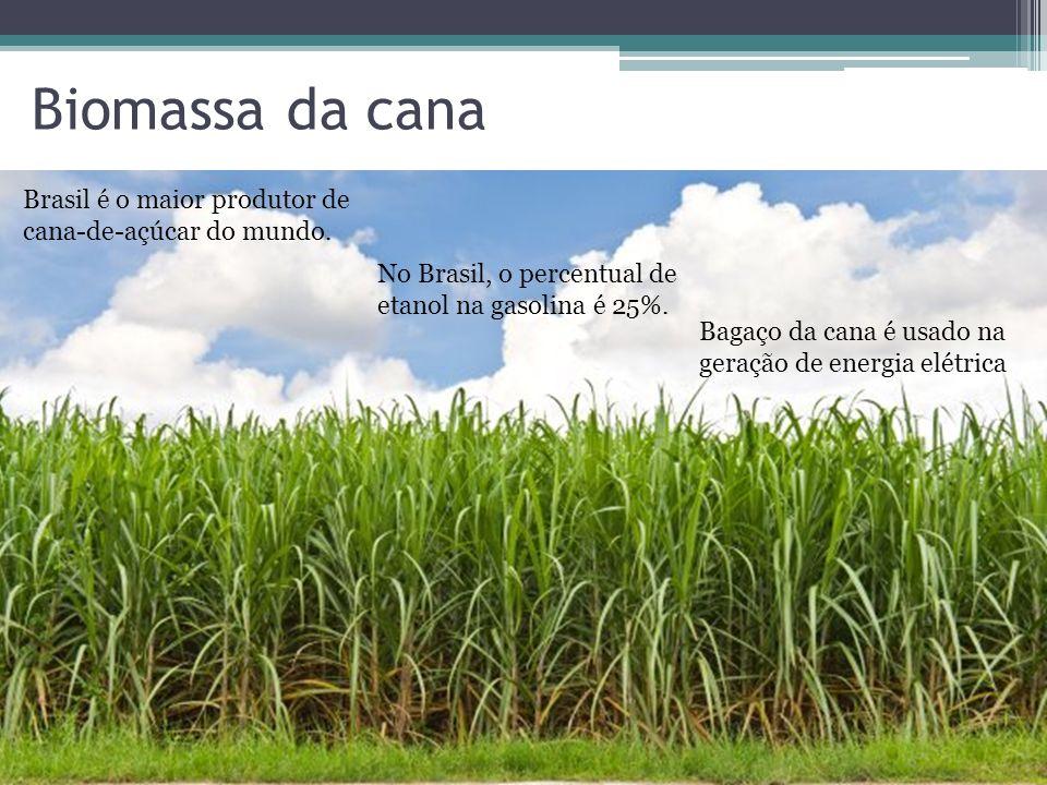 Biomassa da cana Brasil é o maior produtor de cana-de-açúcar do mundo. No Brasil, o percentual de etanol na gasolina é 25%. Bagaço da cana é usado na