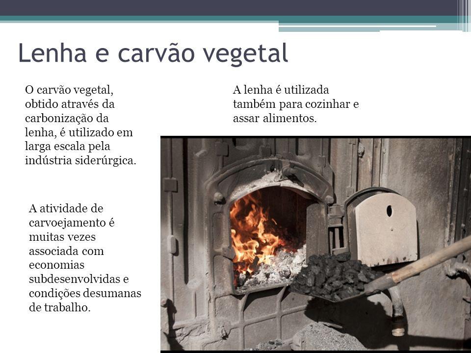 Lenha e carvão vegetal O carvão vegetal, obtido através da carbonização da lenha, é utilizado em larga escala pela indústria siderúrgica. A lenha é ut
