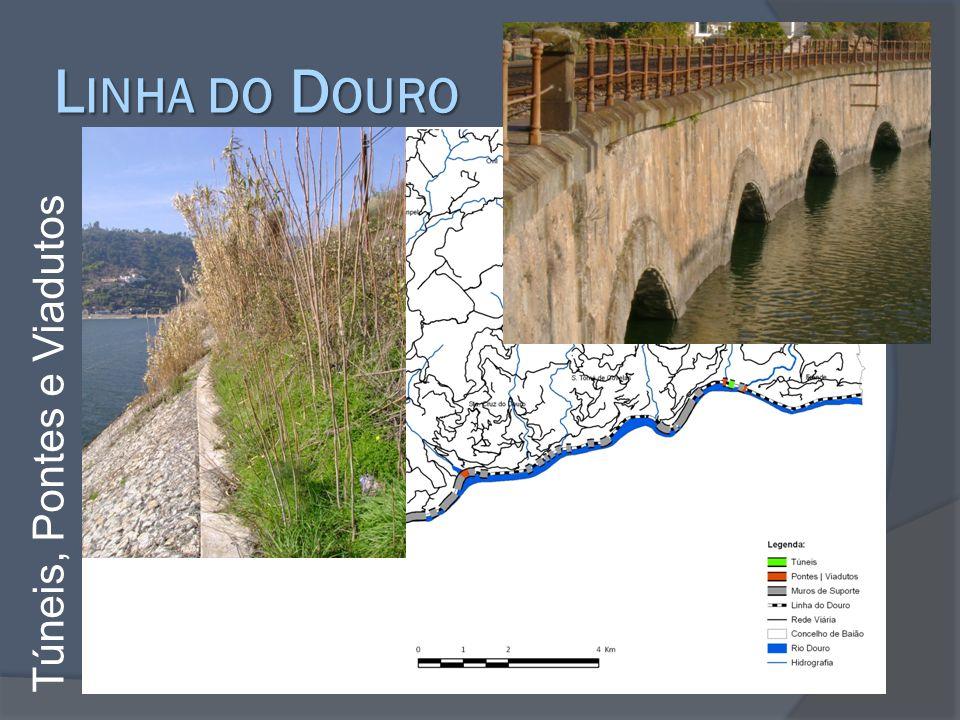L INHA DO D OURO Túneis, Pontes e Viadutos