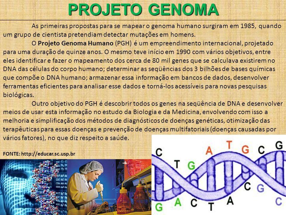 PROJETO GENOMA As primeiras propostas para se mapear o genoma humano surgiram em 1985, quando um grupo de cientista pretendiam detectar mutações em ho