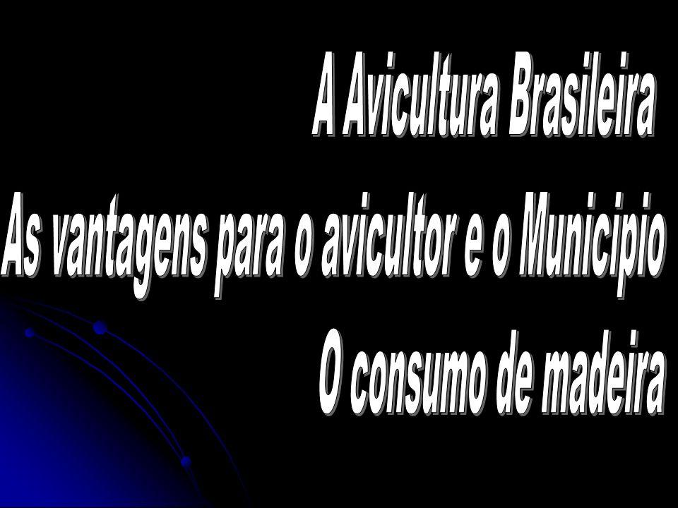 O Brasil abate 450 milhões de frangos por mês Região Sul com 54,45% = 245 milhões Paraná com 22,65 % = 102 milhões PR - 4 milhões por dia