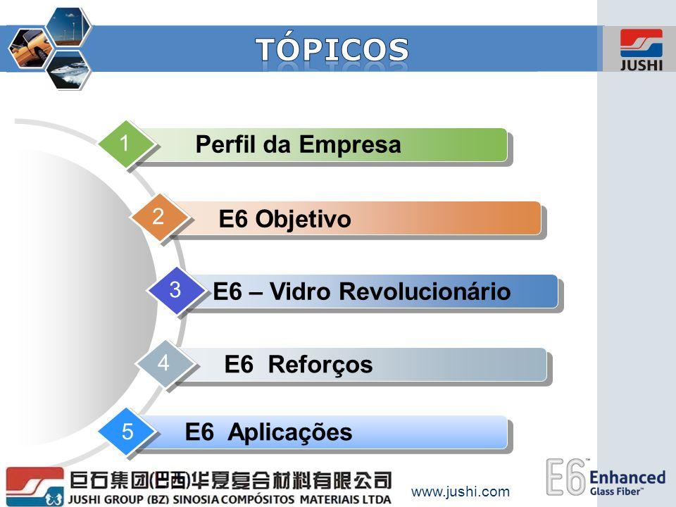 www.jushi.com Perfil da Empresa 1 E6 Objetivo 2 E6 – Vidro Revolucionário 3 E6 Reforços 4 E6 Aplicações 5