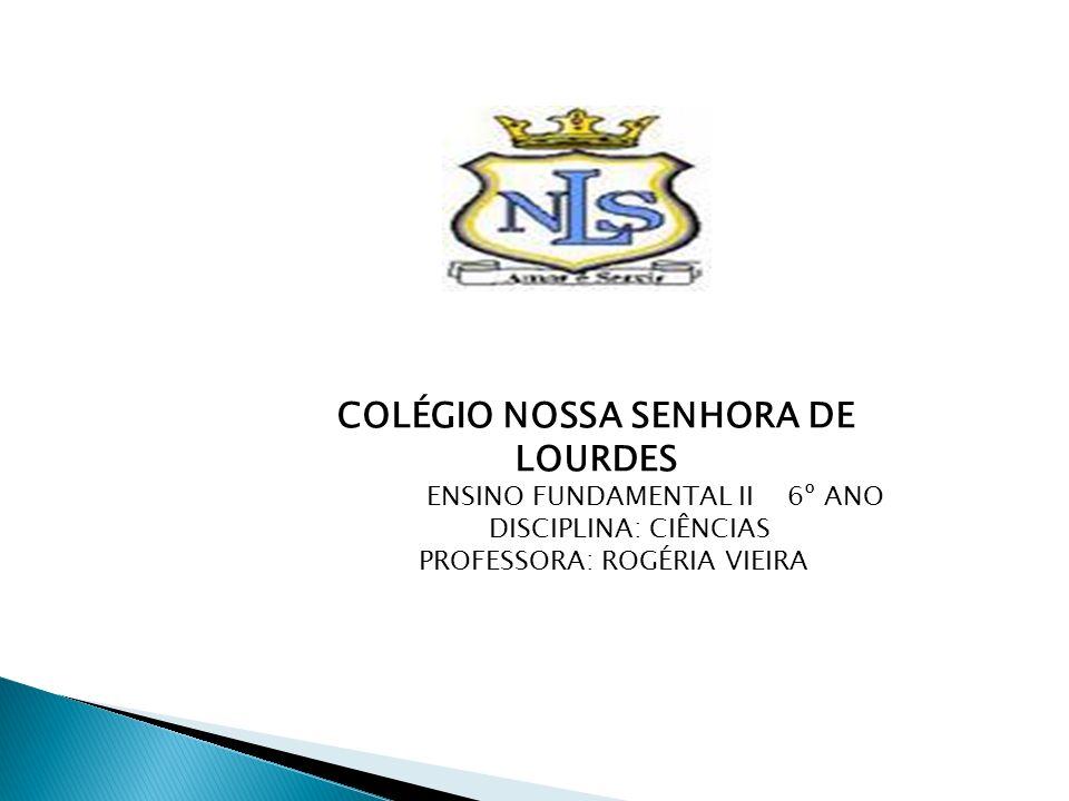 COLÉGIO NOSSA SENHORA DE LOURDES ENSINO FUNDAMENTAL II 6º ANO DISCIPLINA: CIÊNCIAS PROFESSORA: ROGÉRIA VIEIRA