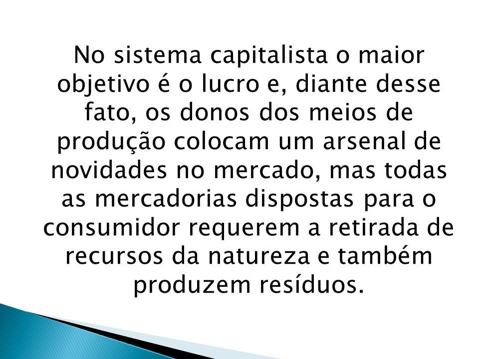 No sistema capitalista o maior objetivo é o lucro e, diante desse fato, os donos dos meios de produção colocam um arsenal de novidades no mercado, mas