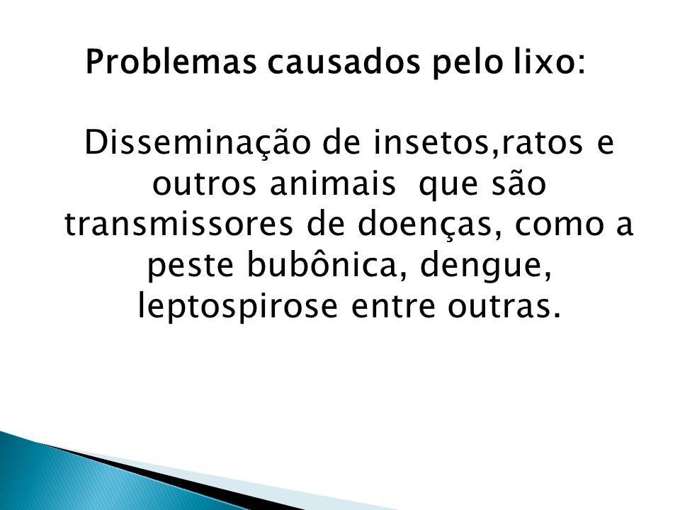 Problemas causados pelo lixo: Disseminação de insetos,ratos e outros animais que são transmissores de doenças, como a peste bubônica, dengue, leptospi