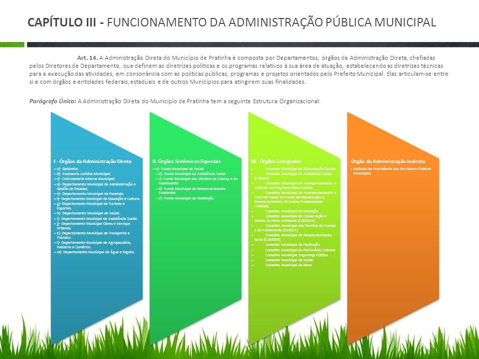 CAPÍTULO III - FUNCIONAMENTO DA ADMINISTRAÇÃO PÚBLICA MUNICIPAL Art. 14. A Administração Direta do Município de Pratinha é composta por Departamentos,