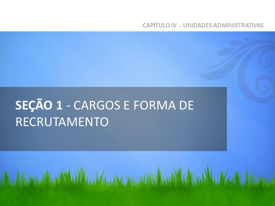 SEÇÃO 1 - CARGOS E FORMA DE RECRUTAMENTO CAPÍTULO IV - UNIDADES ADMINISTRATIVAS