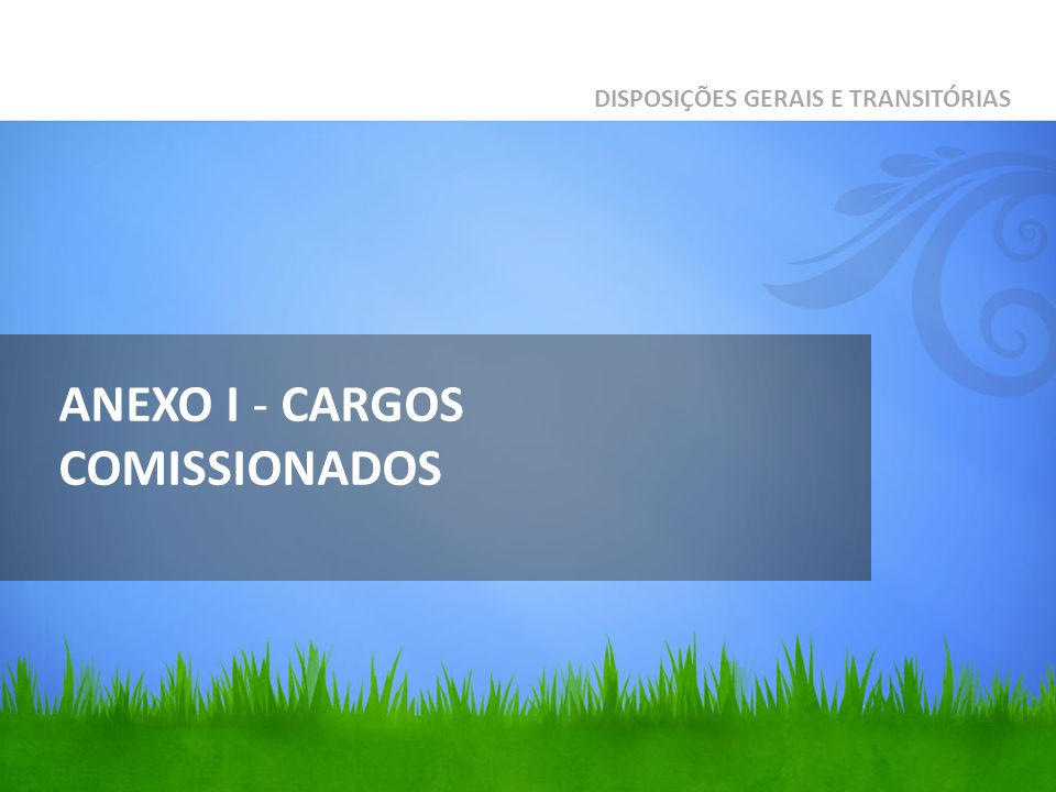 ANEXO I - CARGOS COMISSIONADOS DISPOSIÇÕES GERAIS E TRANSITÓRIAS