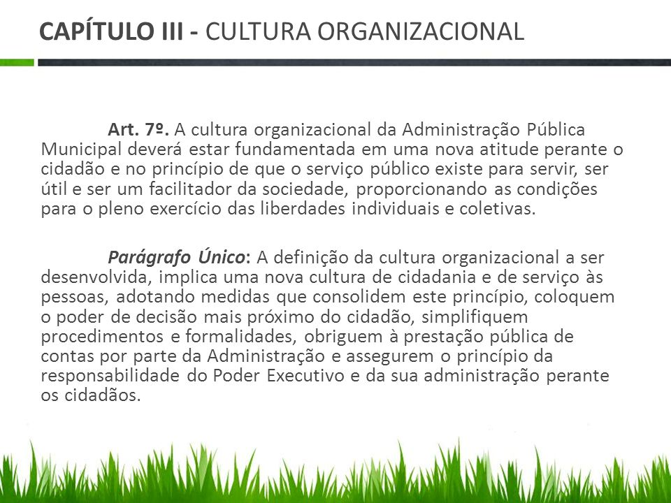 CAPÍTULO III - CULTURA ORGANIZACIONAL Art.7º.
