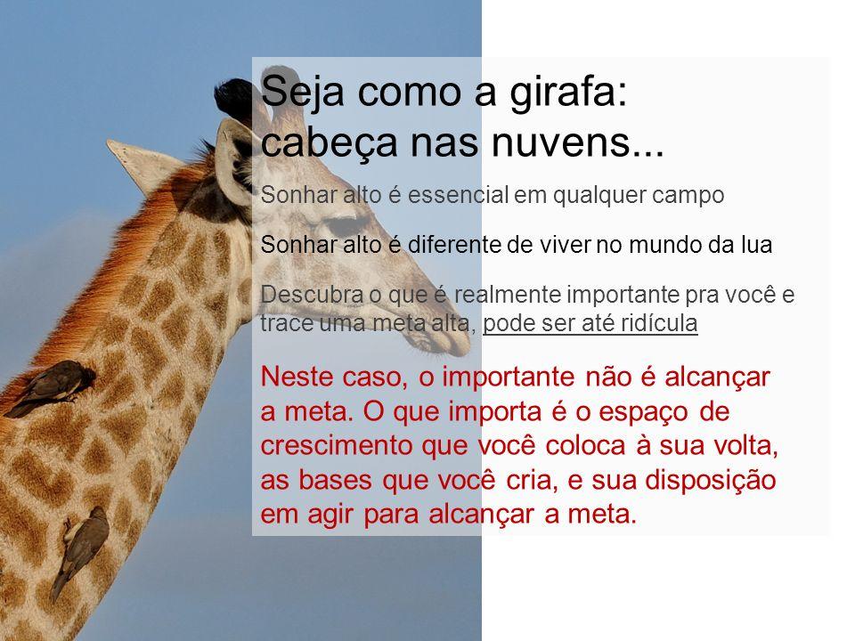Seja como a girafa: cabeça nas nuvens... Sonhar alto é essencial em qualquer campo Sonhar alto é diferente de viver no mundo da lua Descubra o que é r