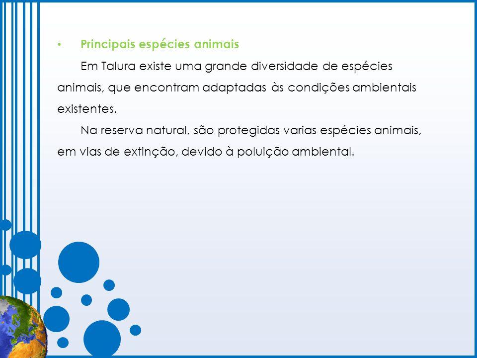 Principais espécies animais Em Talura existe uma grande diversidade de espécies animais, que encontram adaptadas às condições ambientais existentes. N
