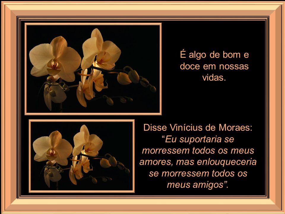 A volta do chamado Big Brother (o grande irmão), exibido nos lares brasileiros, em horário situado em faixa nobre nada tem de afeição, confiança e sol