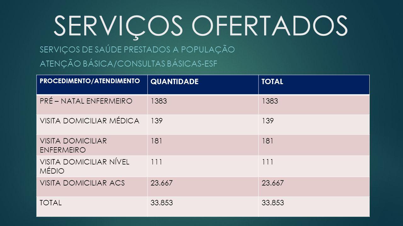 SERVIÇOS OFERTADOS SERVIÇOS DE SAÚDE PRESTADOS A POPULAÇÃO ATENÇÃO BÁSICA/CONSULTAS BÁSICAS-ESF PROCEDIMENTO/ATENDIMENTO QUANTIDADETOTAL PRÉ – NATAL ENFERMEIRO1383 VISITA DOMICILIAR MÉDICA139 VISITA DOMICILIAR ENFERMEIRO 181 VISITA DOMICILIAR NÍVEL MÉDIO 111 VISITA DOMICILIAR ACS23.667 TOTAL33.853