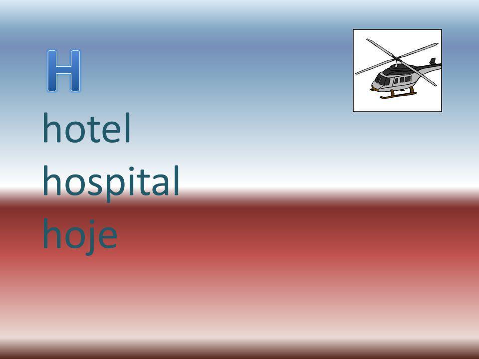 hotel hospital hoje