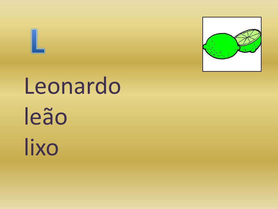 Leonardo leão lixo