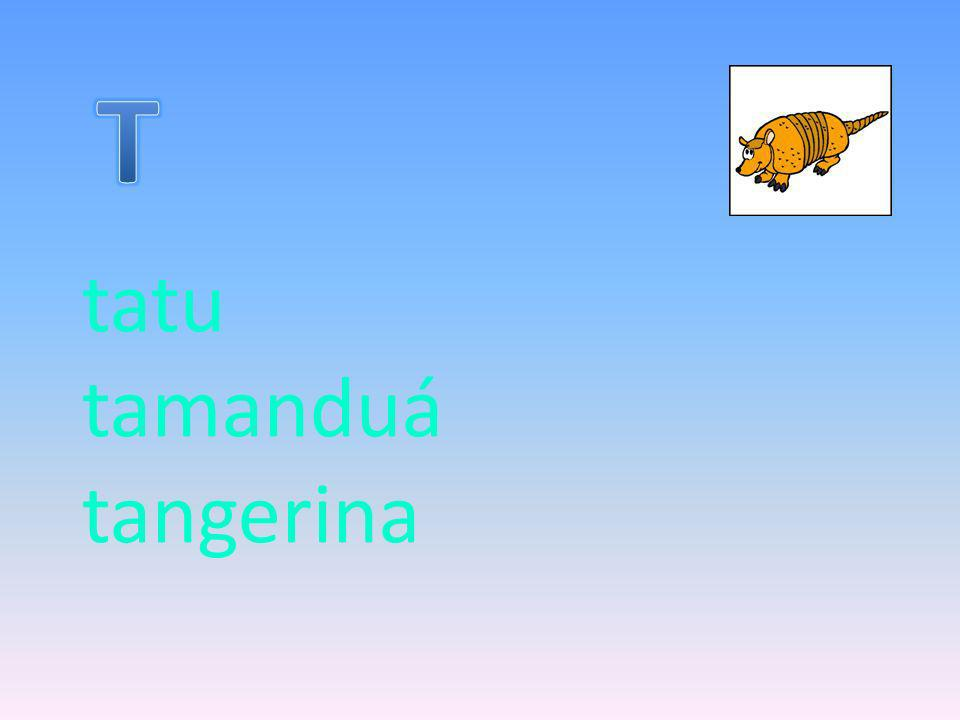 tatu tamanduá tangerina