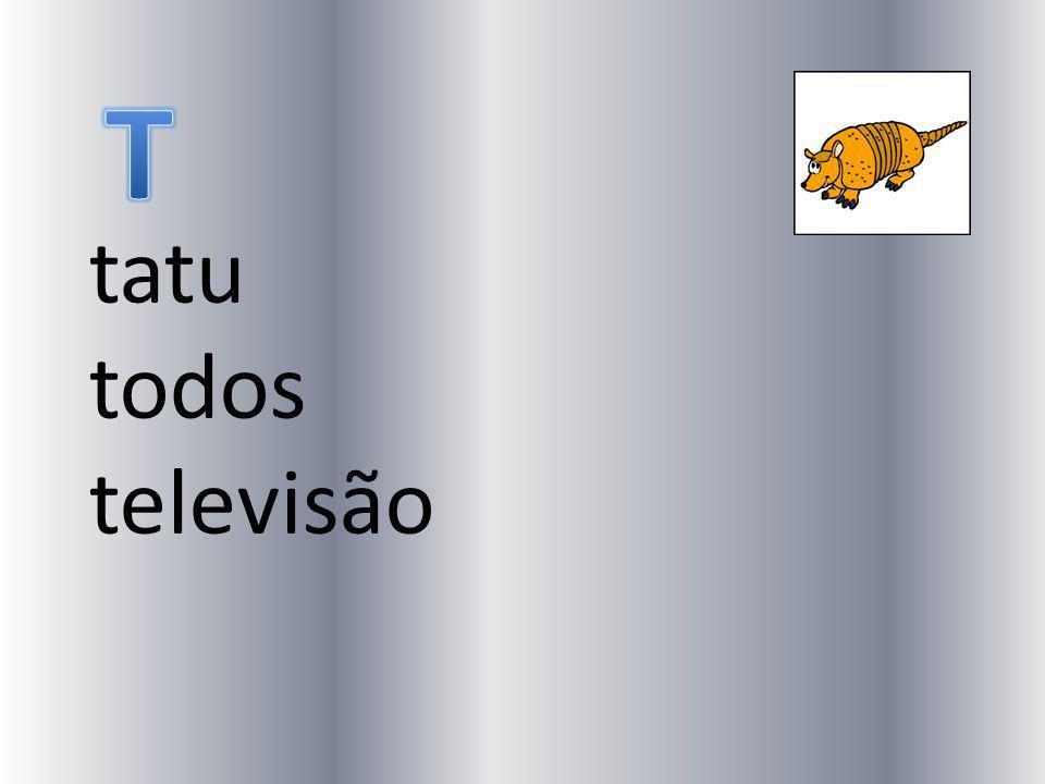 tatu todos televisão