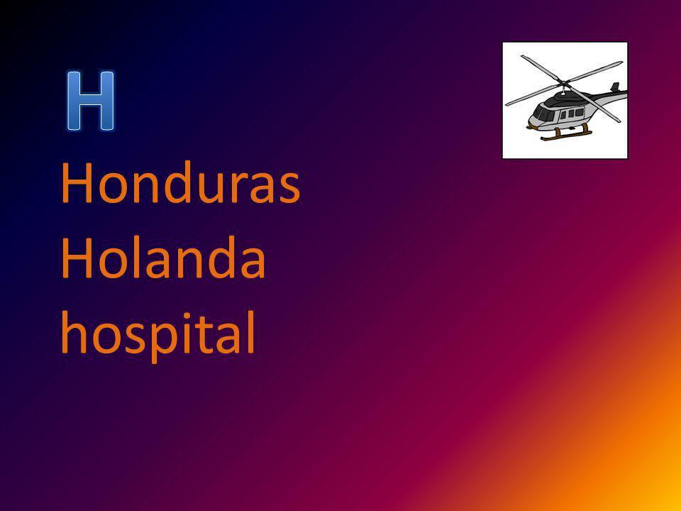 Honduras Holanda hospital