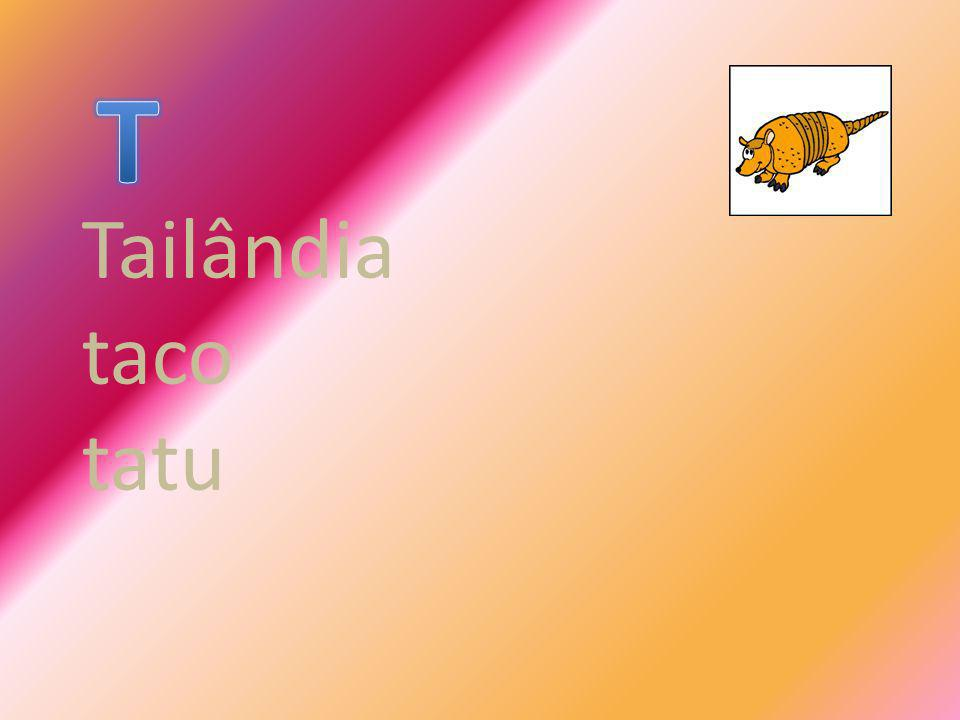 Tailândia taco tatu