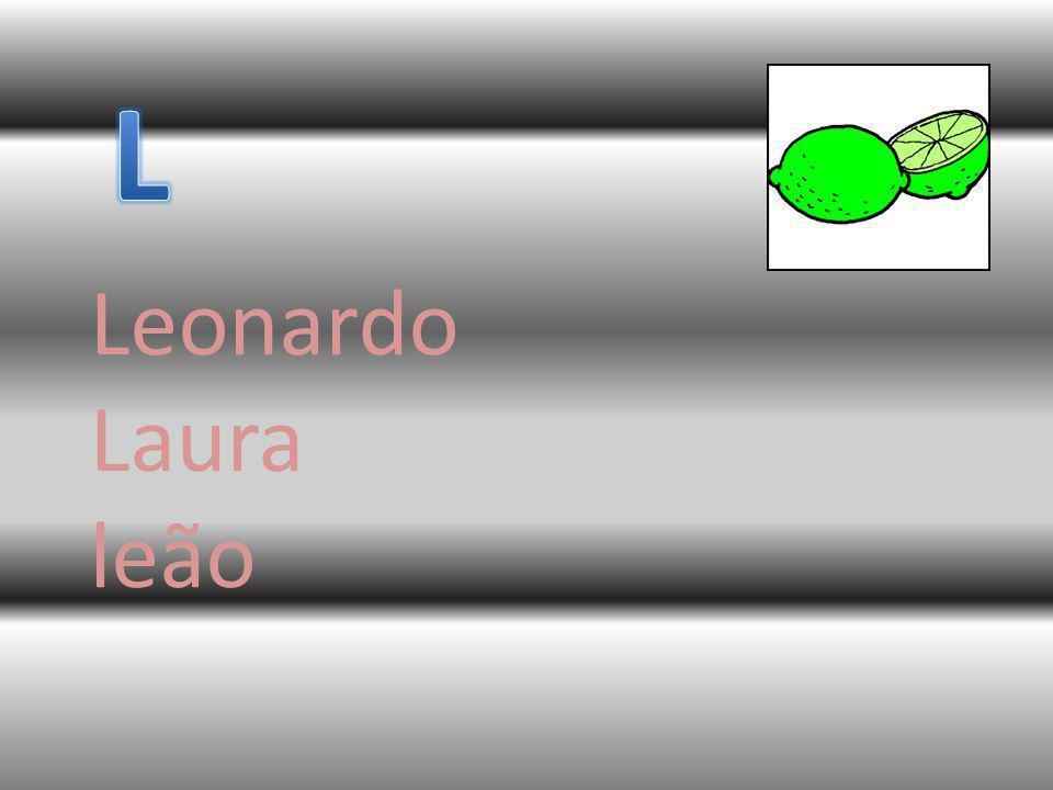 Leonardo Laura leão