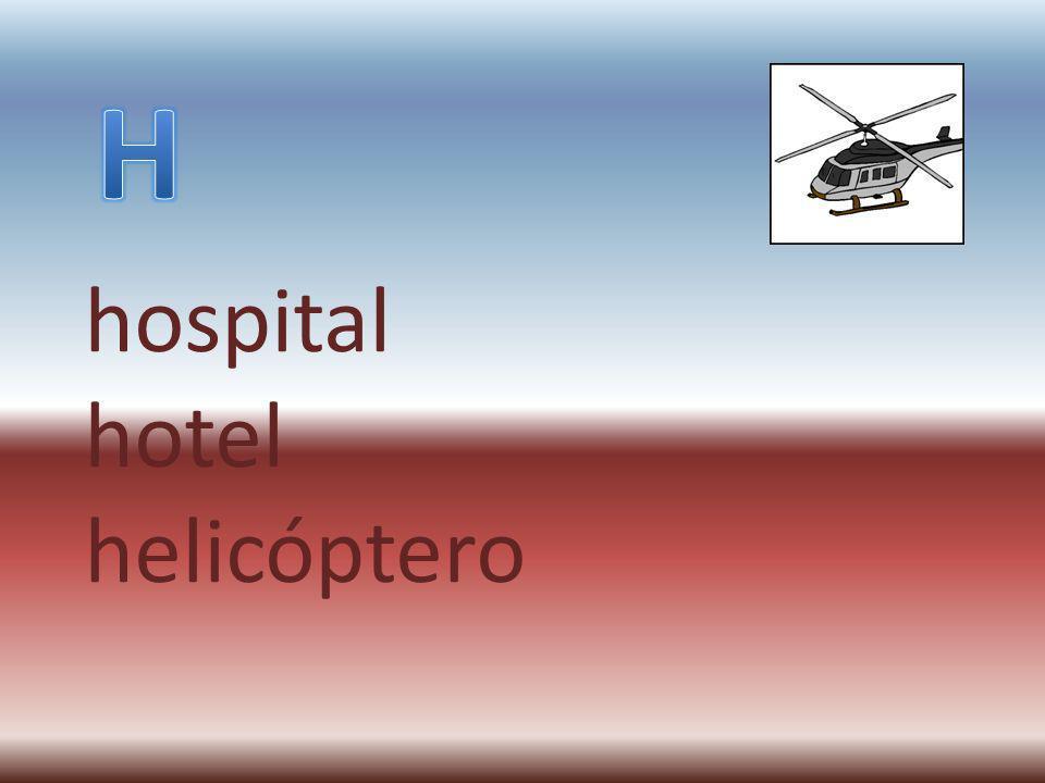 hospital hotel helicóptero