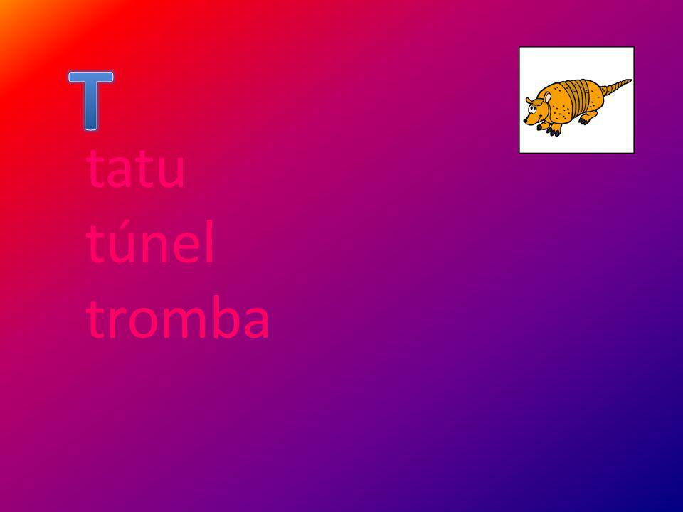 tatu túnel tromba