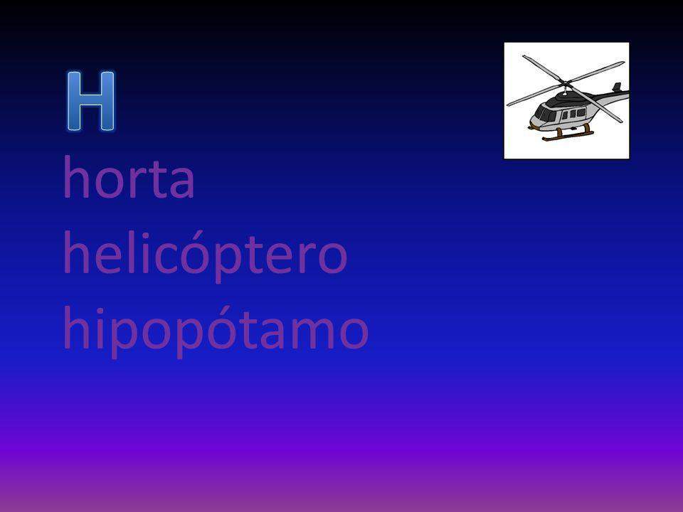 horta helicóptero hipopótamo