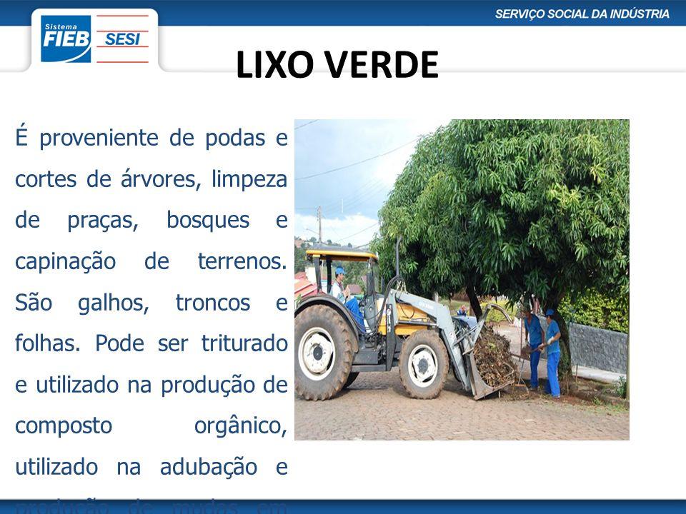 LIXO VERDE É proveniente de podas e cortes de árvores, limpeza de praças, bosques e capinação de terrenos. São galhos, troncos e folhas. Pode ser trit