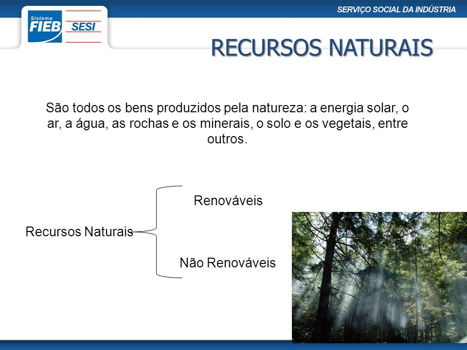 São todos os bens produzidos pela natureza: a energia solar, o ar, a água, as rochas e os minerais, o solo e os vegetais, entre outros. Recursos Natur