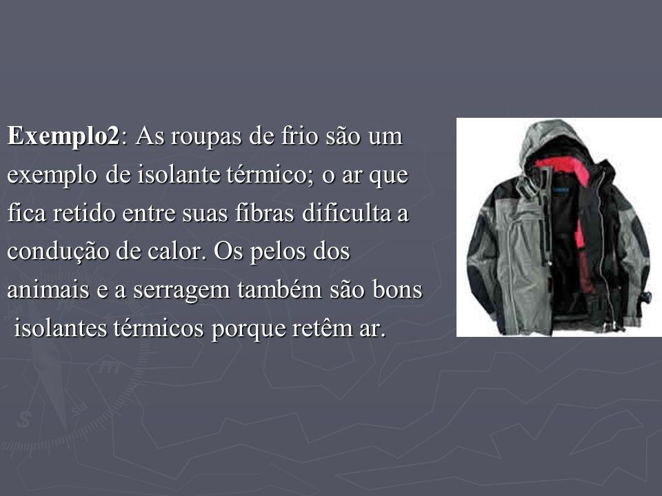 Exemplo2: As roupas de frio são um exemplo de isolante térmico; o ar que fica retido entre suas fibras dificulta a condução de calor. Os pelos dos ani
