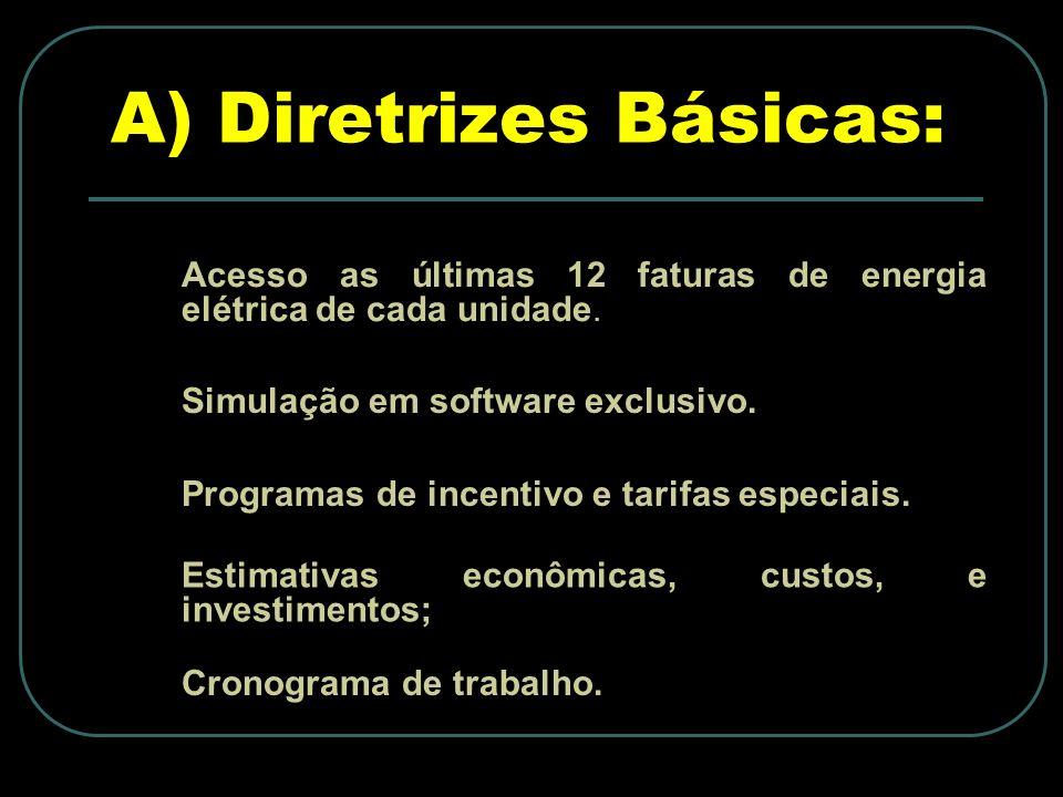 A) Diretrizes Básicas: Acesso as últimas 12 faturas de energia elétrica de cada unidade.