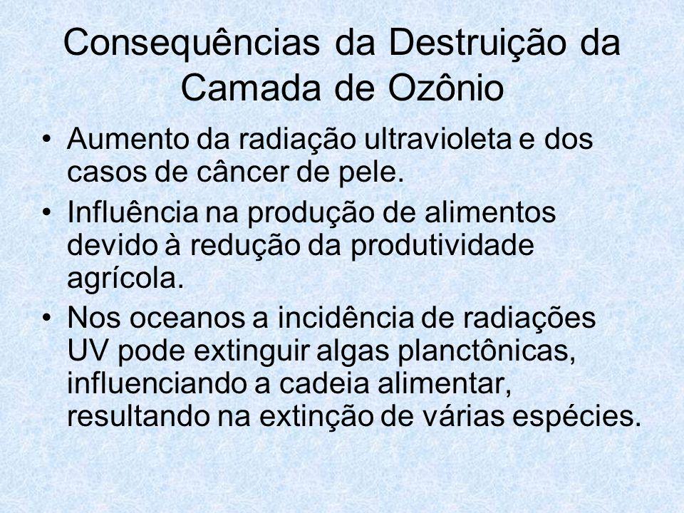 Consequências da Destruição da Camada de Ozônio Aumento da radiação ultravioleta e dos casos de câncer de pele. Influência na produção de alimentos de