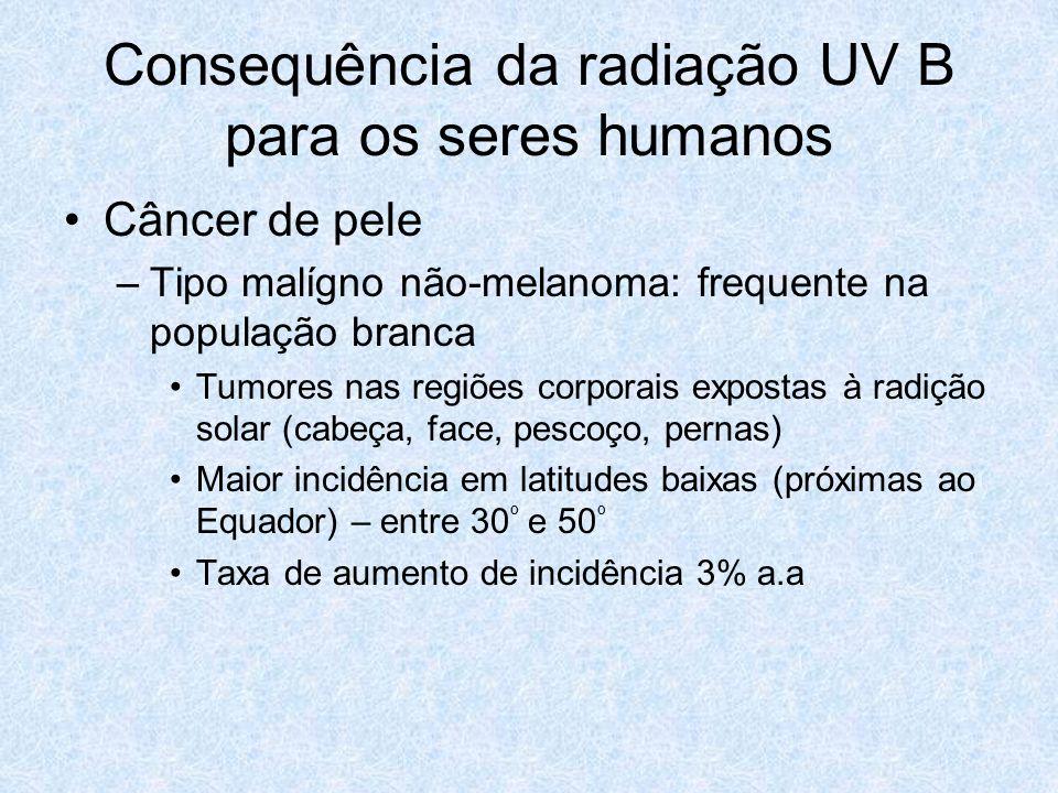 Consequência da radiação UV B para os seres humanos Câncer de pele –Tipo malígno não-melanoma: frequente na população branca Tumores nas regiões corpo
