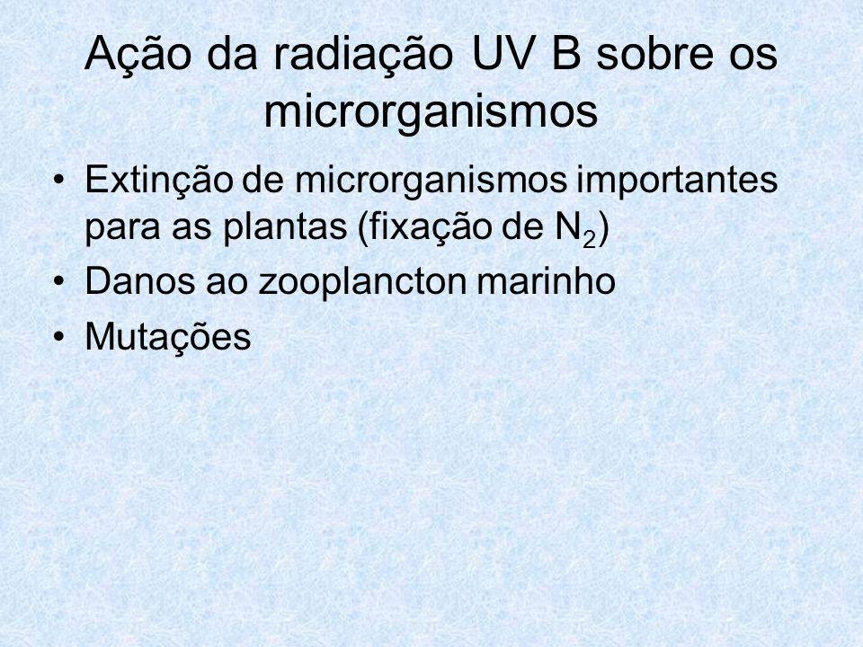 Ação da radiação UV B sobre os microrganismos Extinção de microrganismos importantes para as plantas (fixação de N 2 ) Danos ao zooplancton marinho Mu