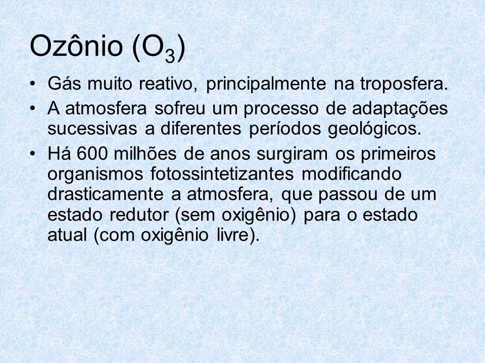 Ozônio (O 3 ) Gás muito reativo, principalmente na troposfera. A atmosfera sofreu um processo de adaptações sucessivas a diferentes períodos geológico