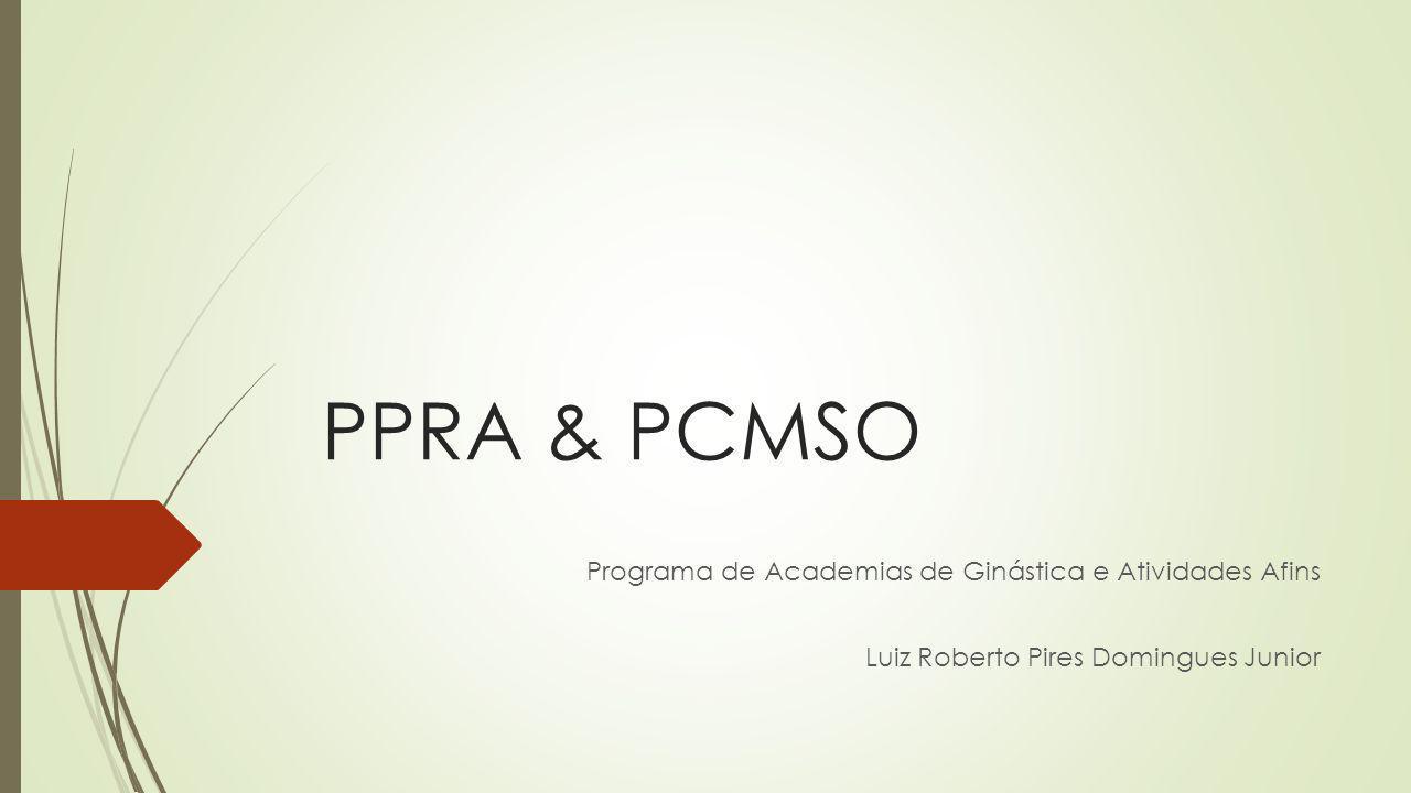 PPRA & PCMSO Programa de Academias de Ginástica e Atividades Afins Luiz Roberto Pires Domingues Junior