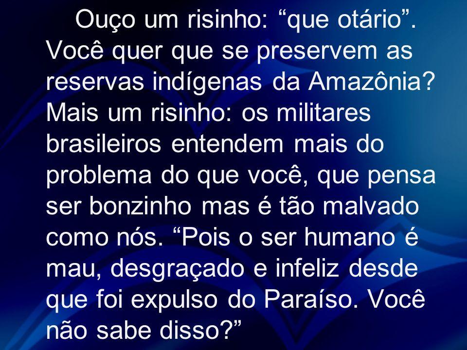 Ouço um risinho: que otário. Você quer que se preservem as reservas indígenas da Amazônia? Mais um risinho: os militares brasileiros entendem mais do