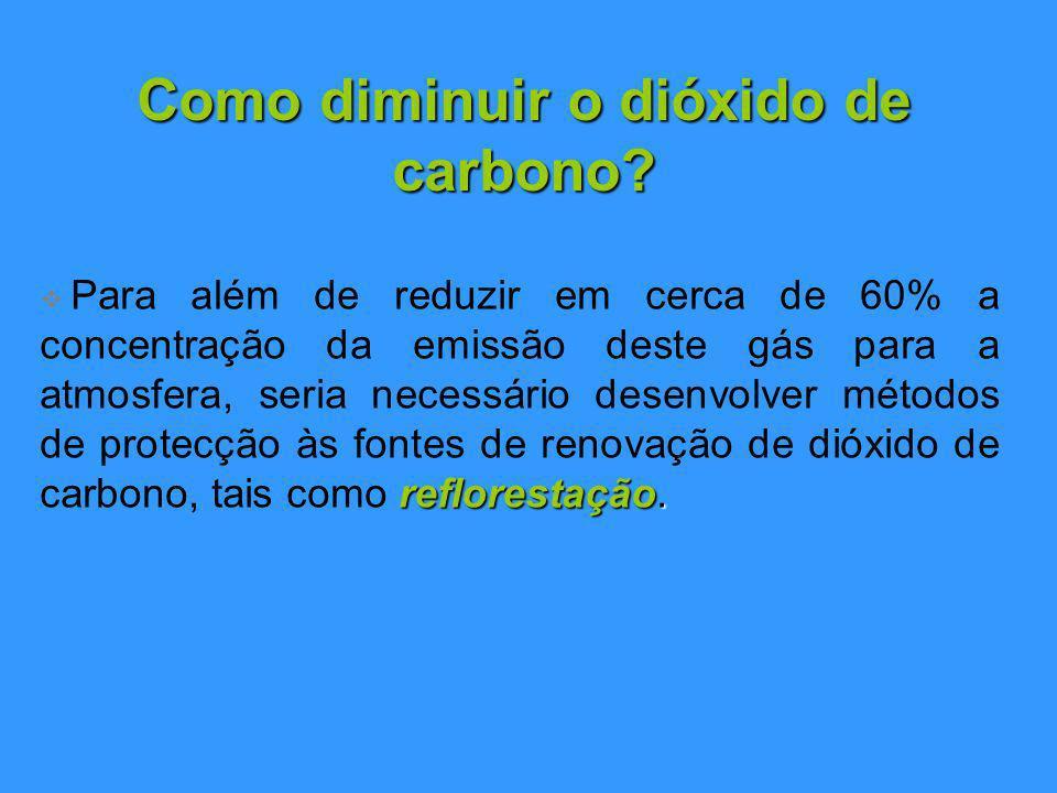 Como diminuir o dióxido de carbono.reflorestação.