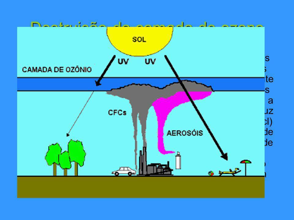 Destruição da camada de ozono Os clorofluorocarbonetos, grupo de compostos químicos também conhecidos por CFC s, são os mais directos responsáveis por este declínio.