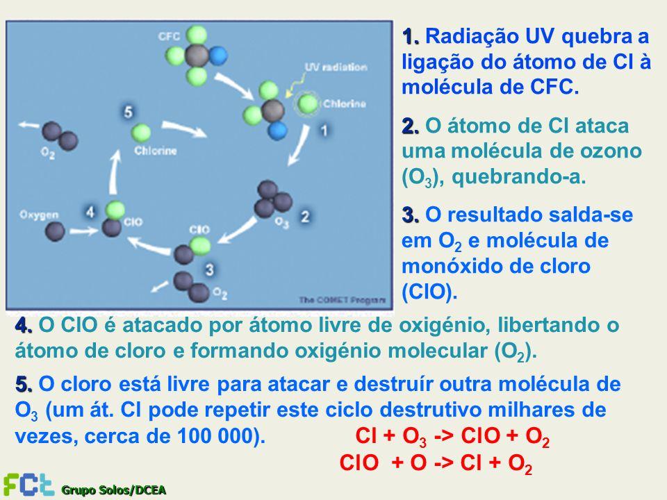 Grupo Solos/DCEA 1. 1. Radiação UV quebra a ligação do átomo de Cl à molécula de CFC. 2. 2. O átomo de Cl ataca uma molécula de ozono (O 3 ), quebrand