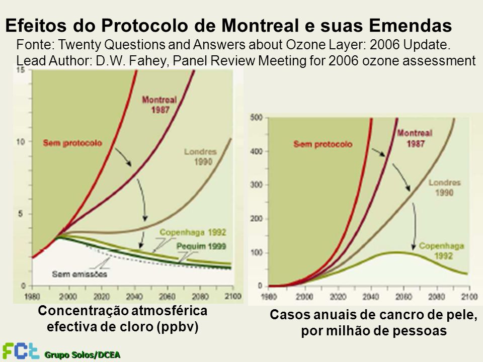 Grupo Solos/DCEA Efeitos do Protocolo de Montreal e suas Emendas Fonte: Twenty Questions and Answers about Ozone Layer: 2006 Update. Lead Author: D.W.